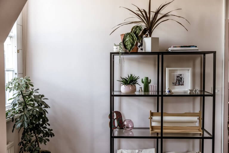 Office One: In theory these are our stationery shelves, but in reality it's my houseplant hospital of shame
